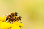 Uncensored | Haterts